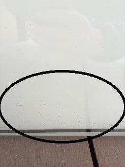 真空ガラスマイクロスペーサー